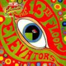 35 Músicas de 13th Floor Elevators